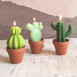 boutique gnooss bougie cactus made in france