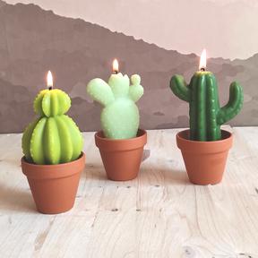 gnooss-boutique-La curieuse fabrique-bougies-artisanales